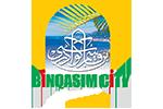bin qasim city